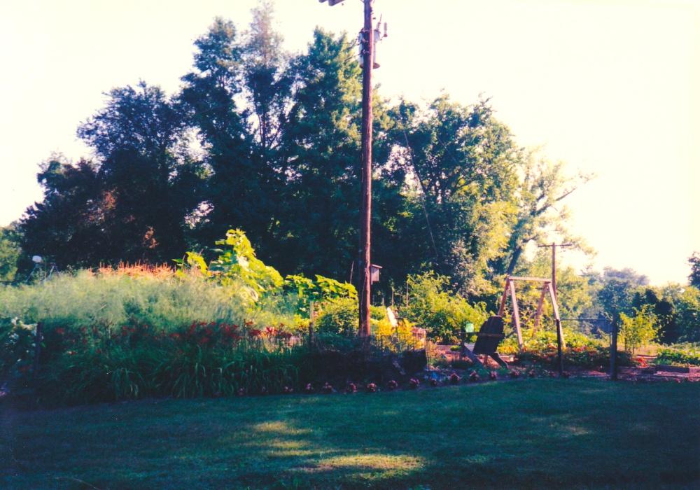 1997 garden.jpg