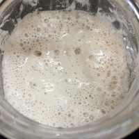 Preserving Sourdough Starter, Part 2: Regeneration